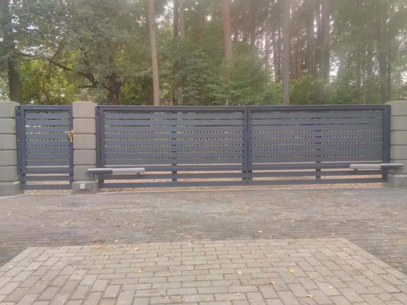 Koka zogi uzstadisana razosana Riga Latvija 28