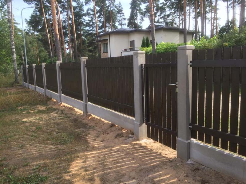 Koka zogi uzstadisana razosana Riga Latvija 35